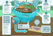 Environmental Awareness / The environment: reduce, reuse, recycle, etc.