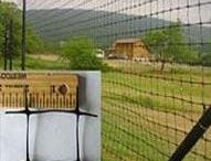 Deer Fencing / Need to protect your property from deer and other wild animals?  Check out our high-quality deer fencing!