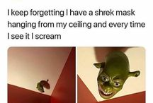 What are u doing on mah swamp