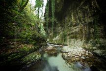 Valle Dell' Orfento / La Riserva Naturale della Valle dell'Orfento è una delle zone più belle, selvagge e spettacolari dell'intero Abruzzo, si estende su un ampio territorio che sale da 500 a 2.600 m. di altitudine ed è ricoperto da immensi e lussureggianti boschi di faggio solcati da numerosi canyons ricchi di acque e fragorose cascate.