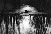 Paul Caponigro / Born 1932. American photographer. Caponigro studied with Minor White and has been awarded two Guggenheim Fellowships and three grants from the NEA. He is best known for his landscape works and for the mystical and spiritual qualities of his work. He is often regarded as one of America's foremost landscape photographers.