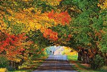 Осень / Осеннее настроение