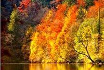 autunno love