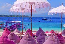 Bali tervek