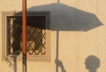 shadows ✕