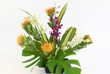 DIY Hawaiian Flower Arranging 'Makamae' Precious Flower Assortment / Step by step arranging guide for the Hawaiian flower assortment 'Makamae' which means 'precious' in Hawaiian.  http://www.withouraloha.com/shop/hawaiian-flowers-makamae/