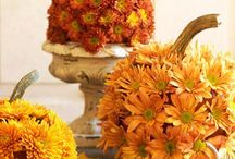 AWESOME AUTUMN / The awesome colors in nature and decorations of Autumn / by Sharon Eide