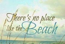 Beach & shells