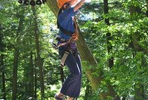 Treetop Eco-Adventure Park With Kids