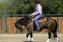 Intermediate Series / The second level of the Method focuses on gaining even more control of your horse's feet on the ground and achieving true lightness and suppleness in the saddle.