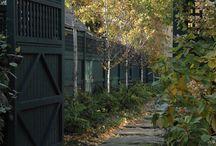 A stroll through the garden