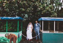 SH BRIDE: LAUREN & ALEX / Best friends since high school, Lauren and Alex wanted to embrace the native Australian flora and fauna in their special day. Beautifully captured by And A Day Photography.