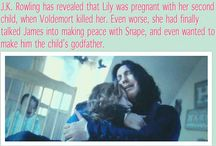 My Love: Harry Potter