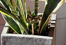 Accessoire pour plante verte / Des petites sculptures de bois sculptées et peintes à la main égailleront vos plantes vertes.  Découvrez tous nos produits sur www.sculpteursdulac.com