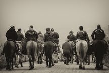 transhumance, ancestral ritual / a perpetual migrate that satisfied the spirit
