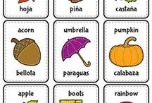 Spanish  - English