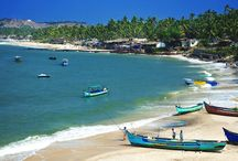 Beaches in India / India has got some of the world's best beaches in Goa.
