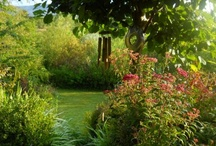 My Style / permaculture, garden,cottage,rustic and shabby chic!