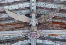 winged... / by P Cruickshank-Schott