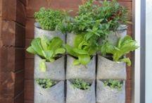 Regalos EcoBrotes  / Ideas para regalar a los amantes del #huerto urbano