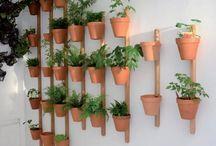 jardiniere interieur