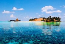 Maldives / Welcome to the Maldives, where sands are white as the smiles of the locals, where fish swim happily in the warm waters of the Indian Ocean, where the weather is a dream, and the deep rays of the sun wait to engulf you their arms.