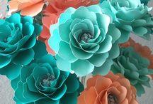 fiori campioni