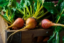 Top Tips for Local Food / by Bucky Box : Tools for a better food system
