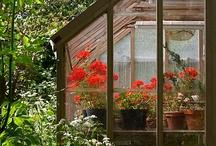 θερμοκήπιο-greenhouse