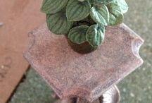 Dollhouse plants printable and tutorials / by Betty Wayne