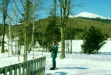 Things to Do / by Cranmore Mt Lodge