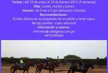 Clases de equitación en Caballo Peruano de Paso / Clases de equitación para niños y adultos en Caballo Peruano de Paso. La sensibilidad, la suavidad del andar y el temperamento dócil del caballo peruano de paso permiten al adulto como al niño relajarse y conocerse mejor a si mismo. Es un excelente deporte para canalizar energías y controlar su emociones. Estamos ubicados en el valle de Lurin, a 30 minutos de Lima (Perú). http://cabalgataslima.blogspot.com