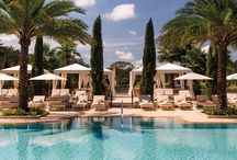Orlando Family Vacations / Family vacation ideas in Orlando. Fun family activities and kid-friendly resorts and hotels.