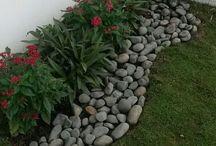 flori cu pietricele