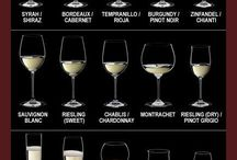 Wines / All of wines