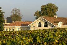 Château Larrivet Haut-Brion / Visite du vignoble et des chais au Château Larrivet Haut-Brion dans le Médoc Bordeaux Réservez avec winetourbooking.com
