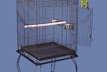 Small Bird Cages / Bird Cages for Small Birds!  Small birds are big on personality, and Bird Cages 4 Less has the right bird cage for you, no matter what type of small bird you own!   Cockatiels, Parakeets, Budgies, Finches, Canaries, Lovebirds and other small parrots are as unique as the bird cages we sell. You'll find play tops, dome tops, flight cages, square, rectangle and round bird cages right here at Bird Cages 4 Less!