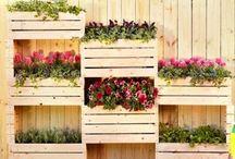 Giardino e balcone