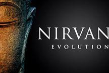 Nirvana Evolution / Finisaj catifelat cu efect iridescent Strat de acoperire acrilic si lavabil pentru interior ce permite realizarea unui efect contrastant de catifea rafinata in functie de unghiul de incidenta al luminii.