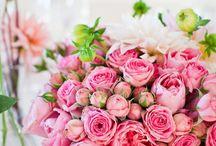 Flowers / by Vontese Farmer