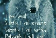 I LOVE WOLVES For the Love of WOLVES :)  :)