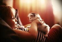 CATS+KIDS