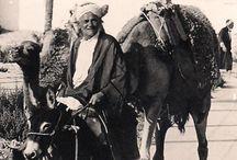 1971. Tunézia / Tunézia