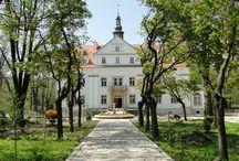 Ciechanowice - Pałac