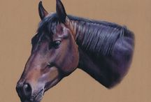 Horse Portraits / Pastel, pencil and oil painting portraits of horses by Yorkshire Pet Portraits