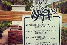 MZDEBBEE AND FRIENDZ / bee, honey, beekeeping