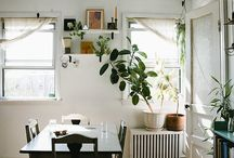 plantas / jardineria / by Liliana Aguirre