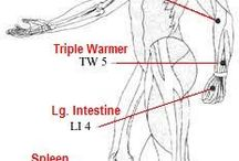 acupuncture /acupressure points