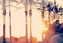 City, ocean, island, sunrise