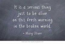 Mary Oliver / Mary Oliver's words of wisdom / by P Mc